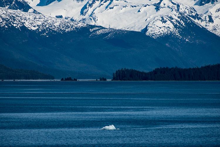 alaska iceberg Endicott arm image d5769z